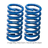 Ground Force Lowering Springs