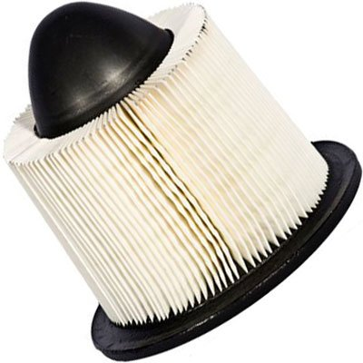 1995-2002 Lincoln Continental Air Filter Motorcraft Lincoln Air Filter FA-1615 MIFA1615